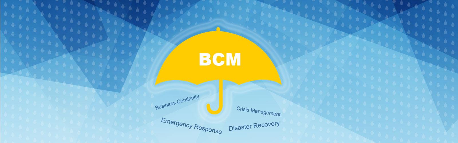 Il Business Continuity Management come professione